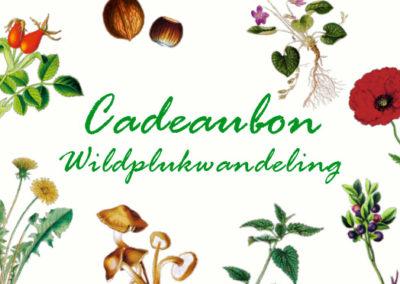 Cadeaubon Wildplukwandeling